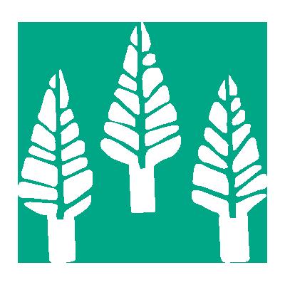 icons-white